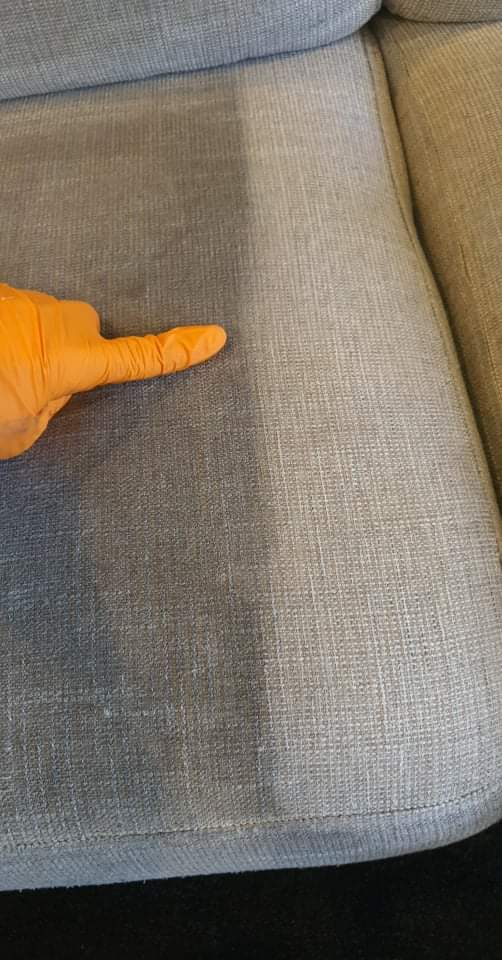 Carpet Care Solutions Carpet Cleaning