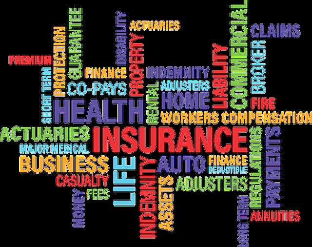 5 Best Insurance Brokers in Wellington