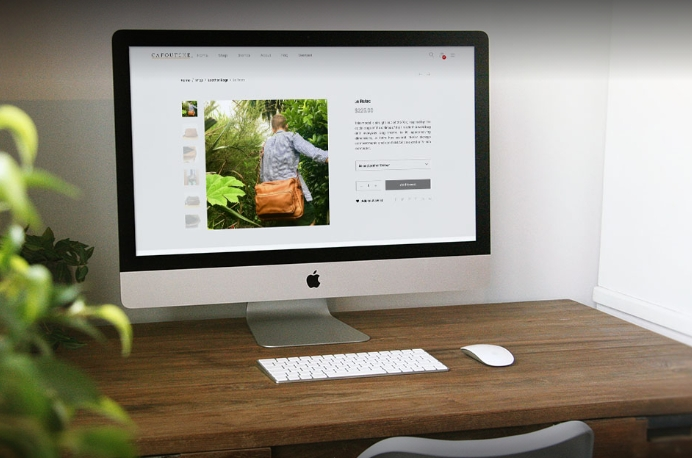 Freelance Web Designer & WordPress Developer Auckland