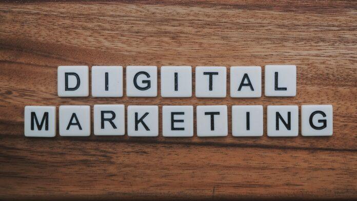5 Best Digital Marketers in Wellington