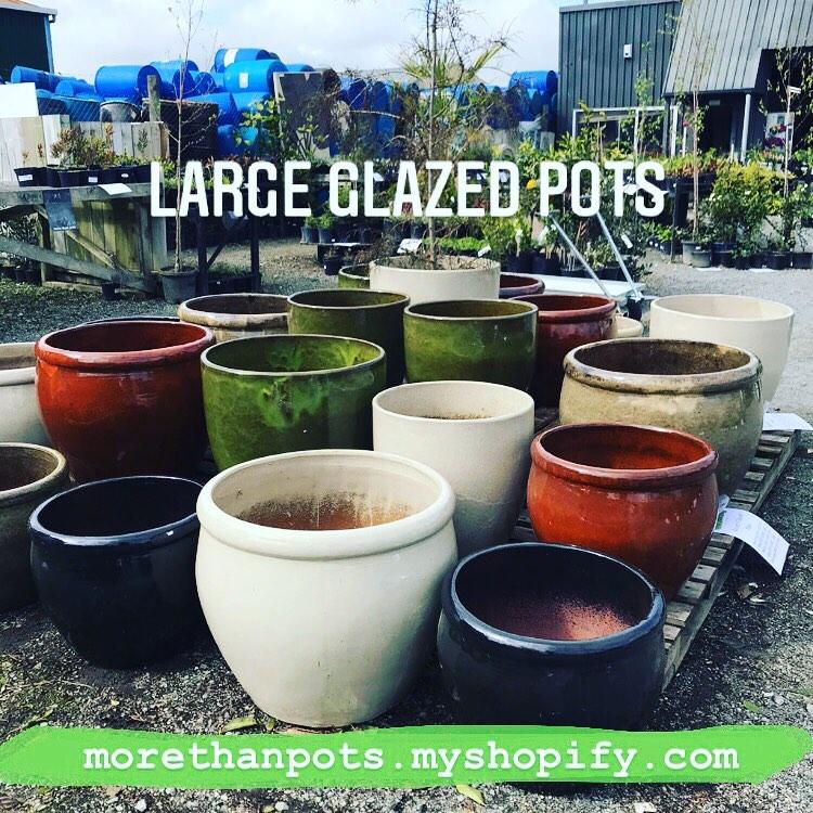 More than Pots