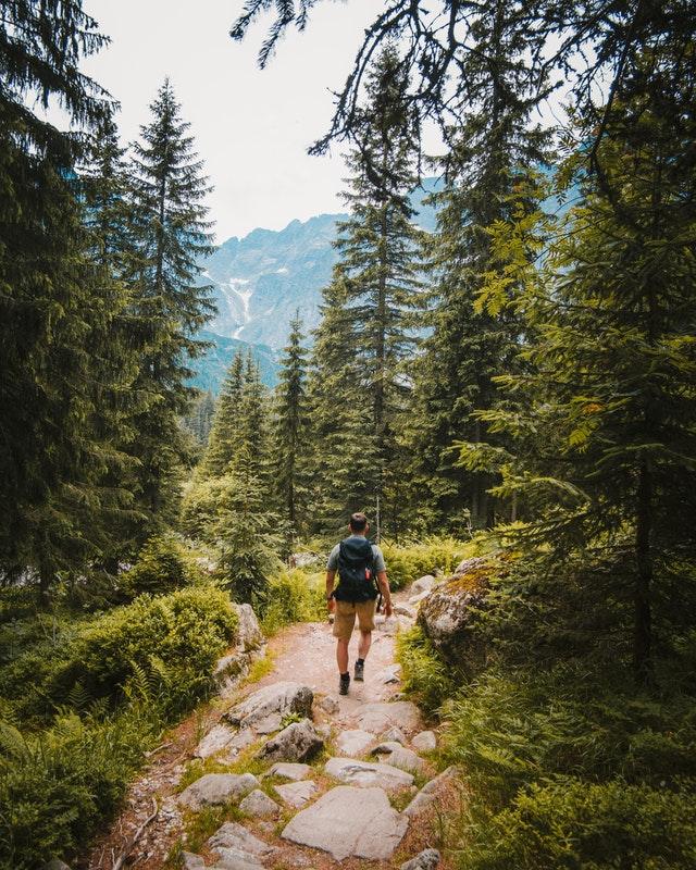 5 Best Hiking Trails in Tauranga