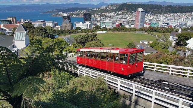 5 Best Places To Visit in Wellington