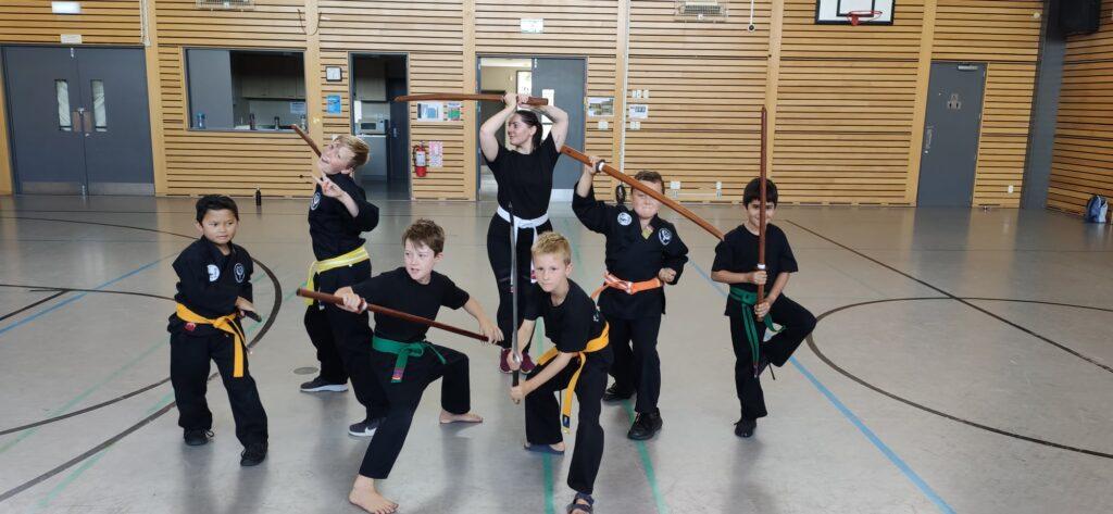Shizoku Martial Arts