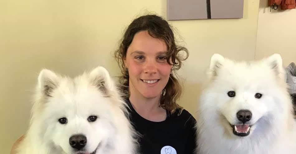 Wellington Dog Groomers